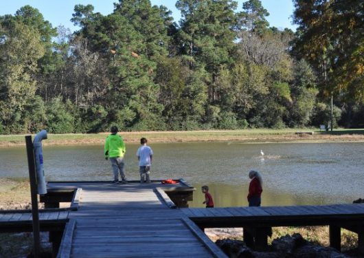 Big kid small city things to do in houston for Places to go fishing in houston
