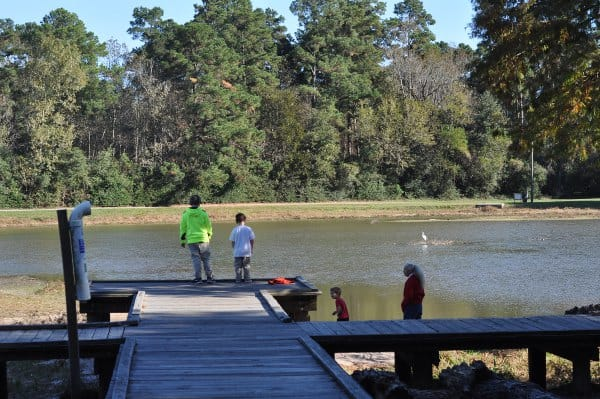 Fishing Lake Picnic Tables 5 Playgrounds Under The Trees Burroughs Park In Tomball