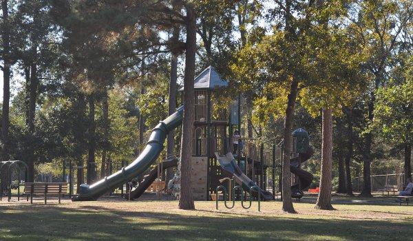 collins-park-tree-house-slide