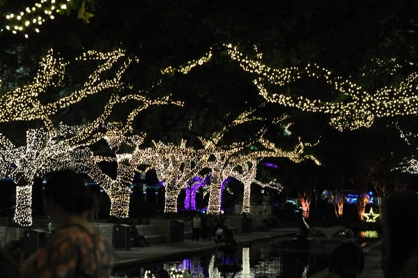 houston-zoo-lights-water