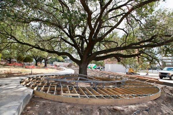levy-park-tree-and-deck