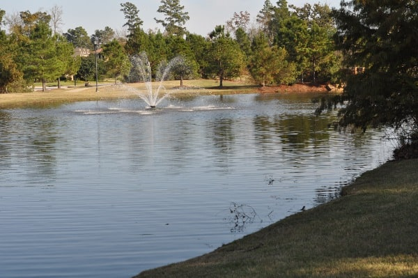 tupelo-park-the-woodlands-lake