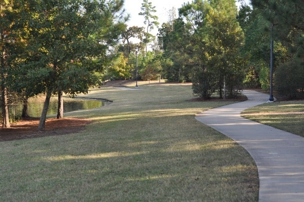 tupelo-park-the-woodlands-path
