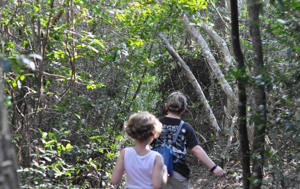 Memorial Park Trails Blue Trail