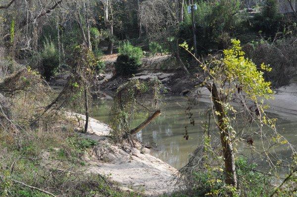 memorial-park-buffalo-bayou