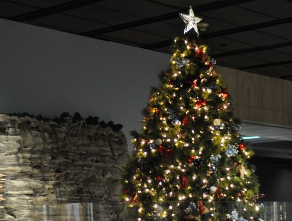 trains-of-texas-christmas-tree-at-houston-museum-of-natural-science