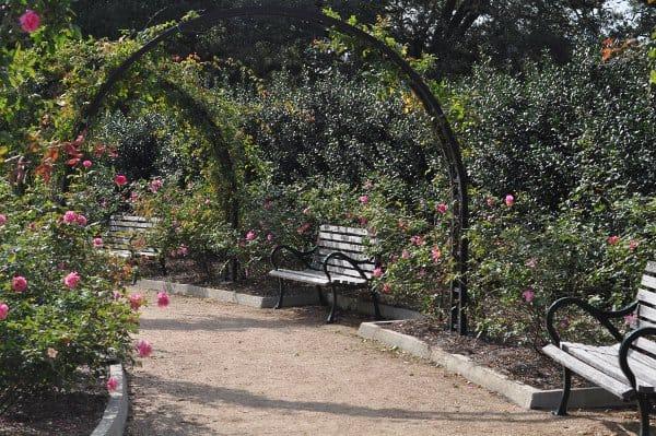 Hermann Park Centennial Park Bench