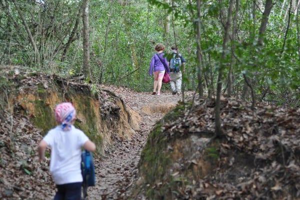 Memorial Park Green Trail Dip