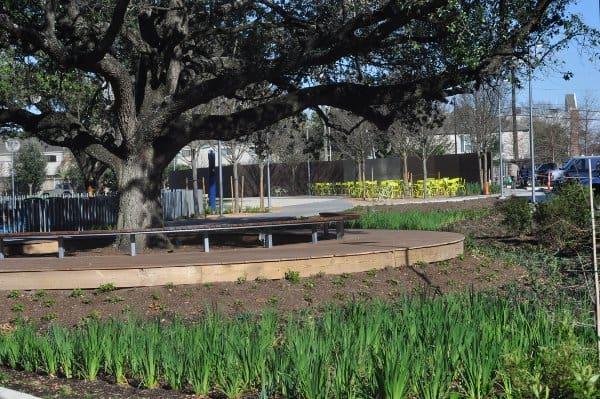 Levy Park Rain Garden