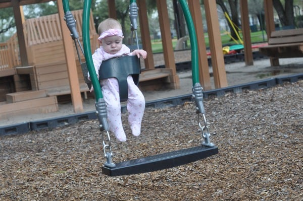 Carol Fox Park Double Swing