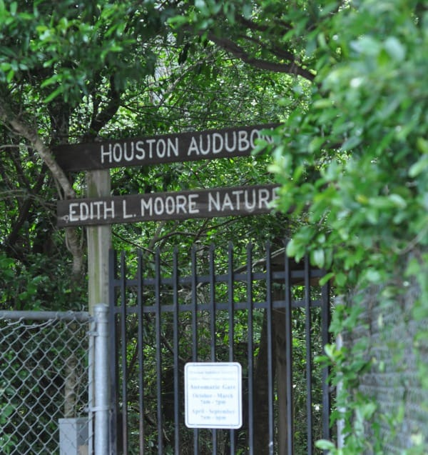 Edith L Moore Nature Sanctuary
