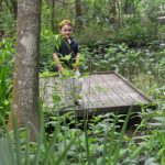 Edith L. Moore Nature Sanctuary…. Get out of the city, without getting out of the city!
