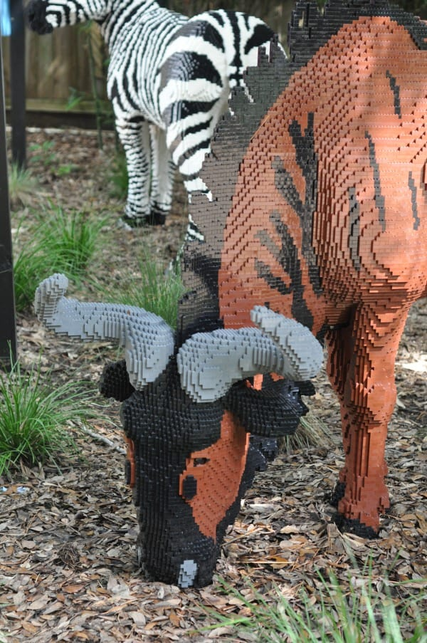 Texas Direct Auto Houston >> Nature Connects at the Houston Zoo… Open Now through ...