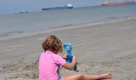 The Really Big Tide & Lots of Shells at Texas City Dike