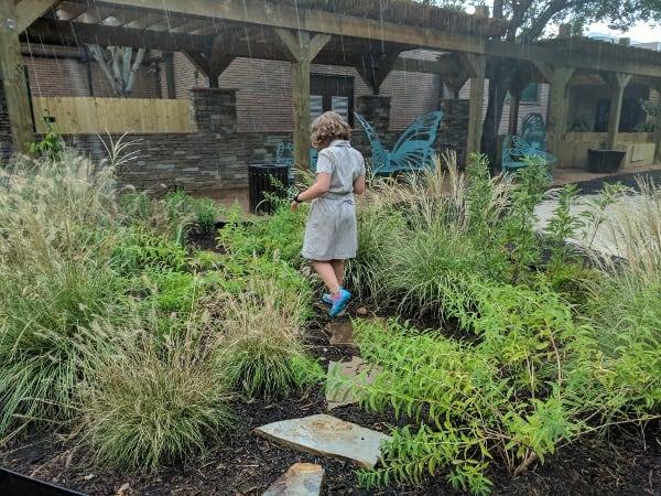 Wild at Houston Zoo