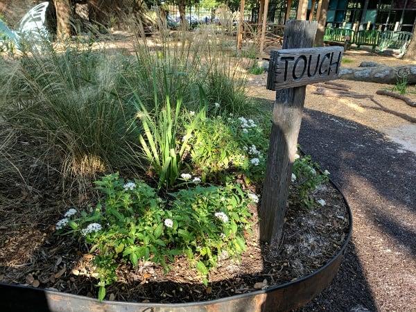 Nature Play Area Houston Zoo