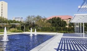 Things to Do in Houston, with Kids… Posts on BigKidSmallCity, Published January 6-12, 2018!