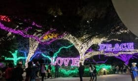 Top 9 Things to Do this Week & Weekend, in Houston, with Kids – November 12-18, 2018
