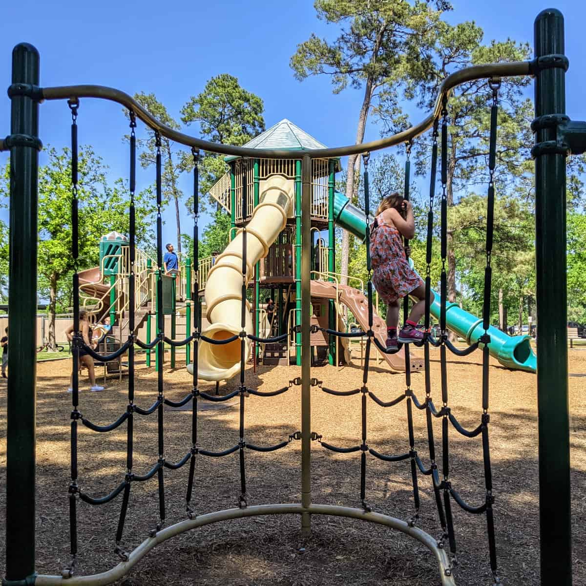 Collins Park Playground and Climber