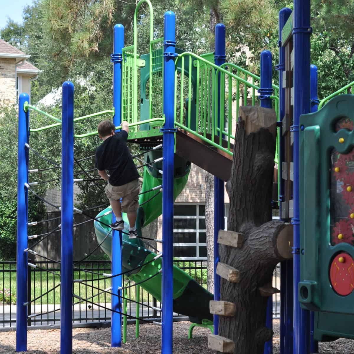 Climbing at Lafayette Park