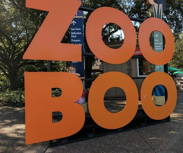 Does The Houston Zoo Decorate For Halloween 2020 Zoo Boo at the Houston Zoo… Beat the Crowds and Find Parking