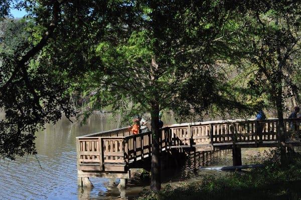 Brazos Bend State Park Lake