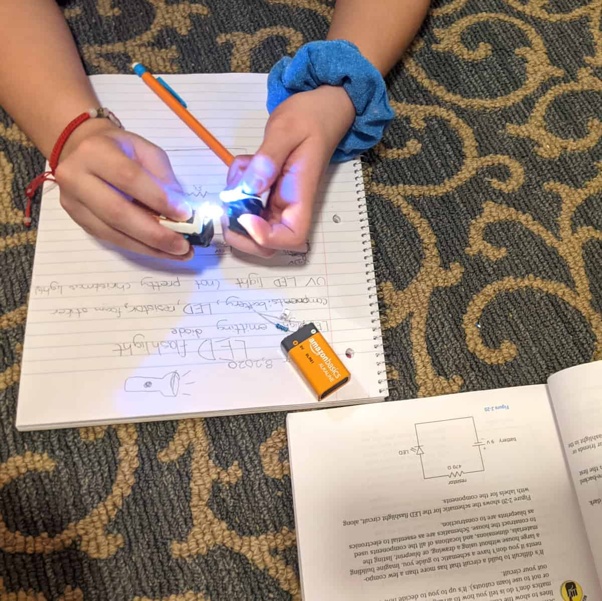 Homeschool Electronics Project