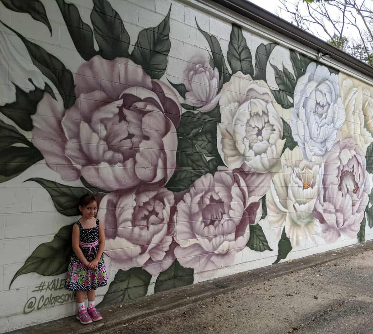 Peony Mural at Kaleido Wall