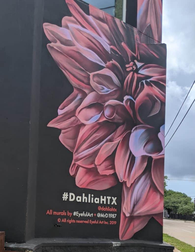 DahliaHTX Murals in Midtown