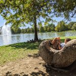 Hermann Park Rock Chair