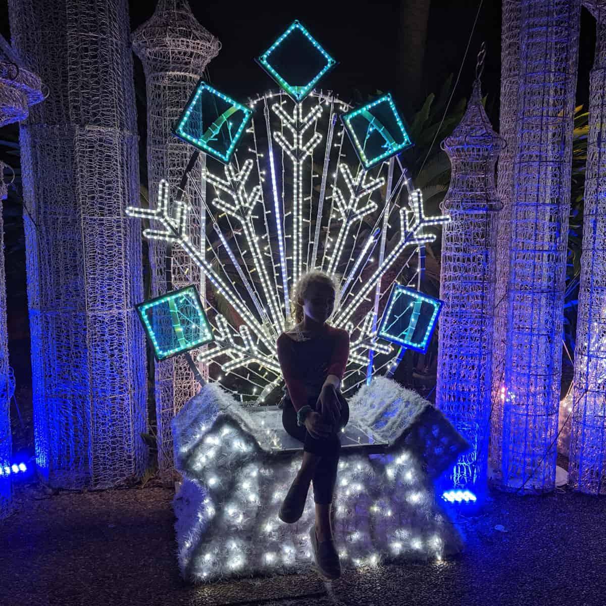 Christmas Light Throne at Houston Zoo Lights