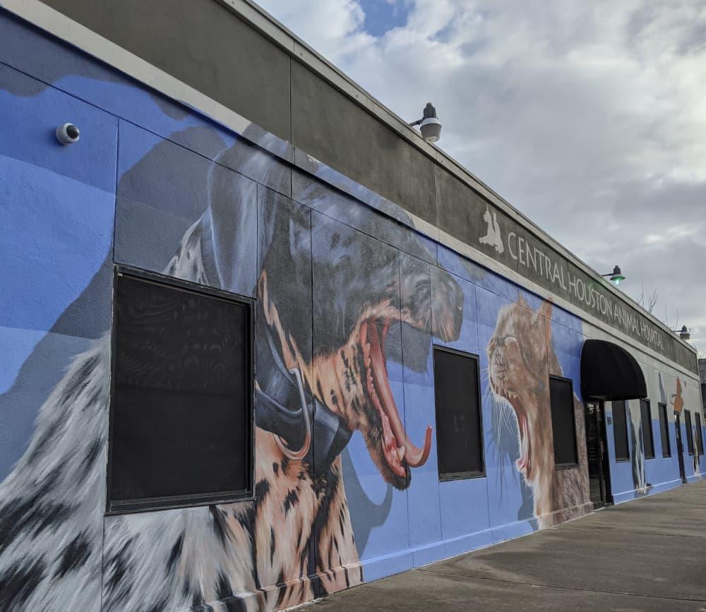 Central Houston Animal Hospital Mural