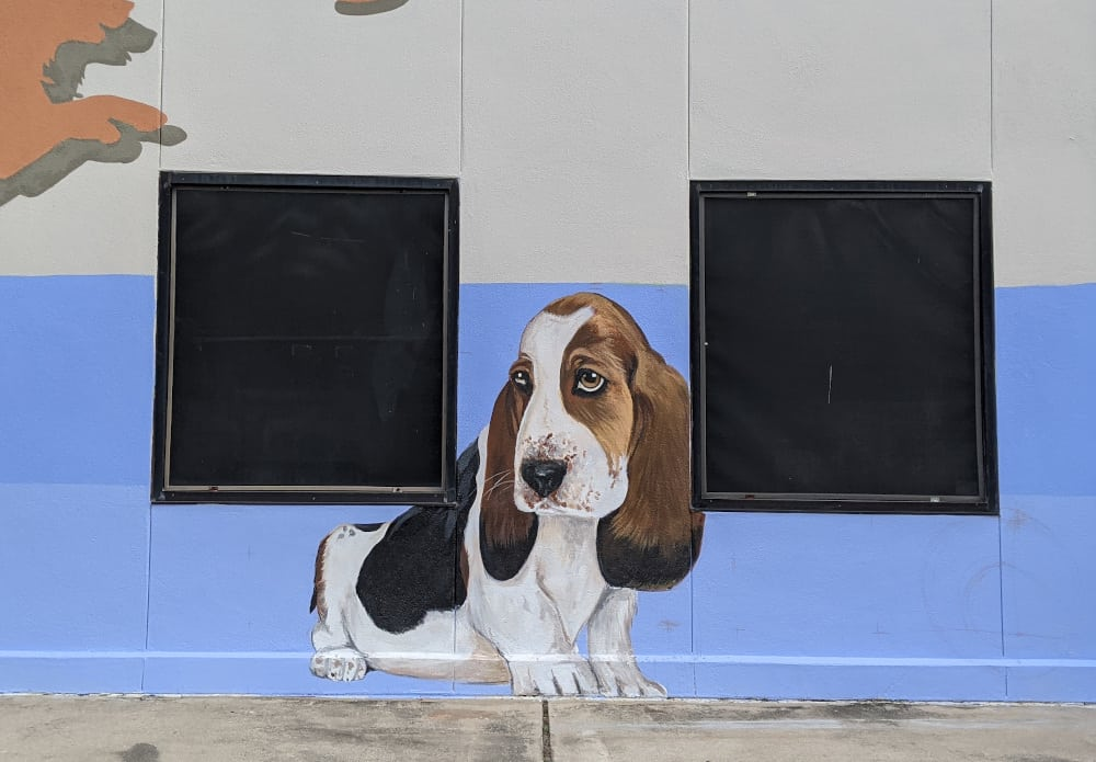 Central Houston Animal Hospital Mural Dog