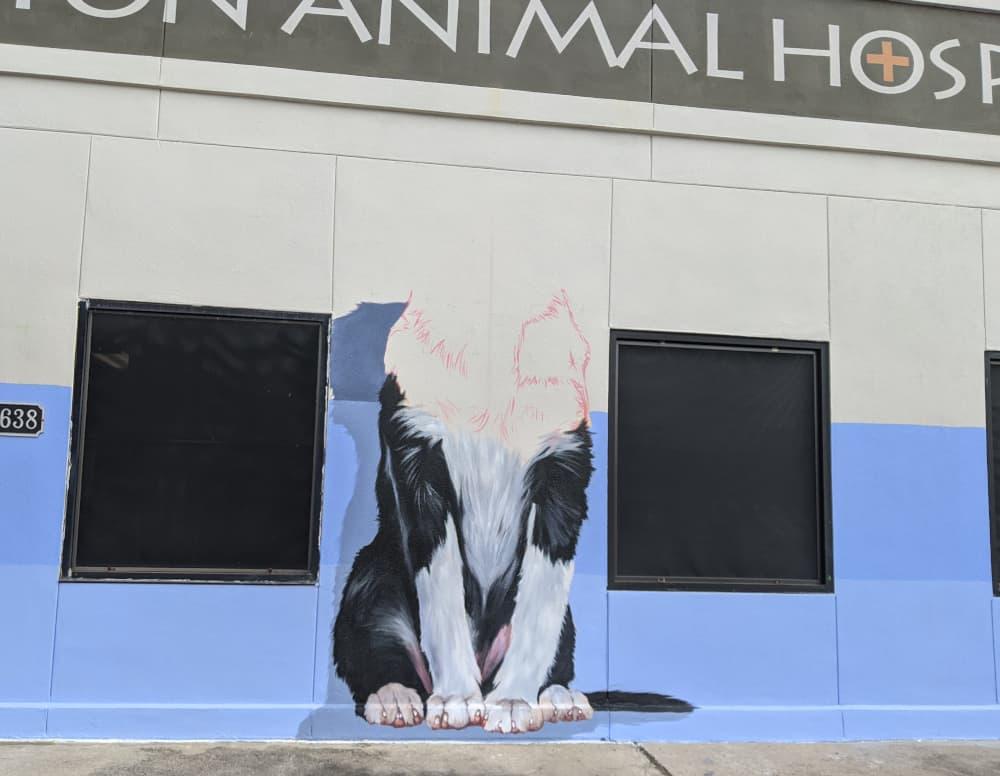Central Houston Animal Hospital Mural Finishing Mural