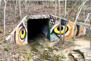 Owl Eyes Houston Arboretum Mural