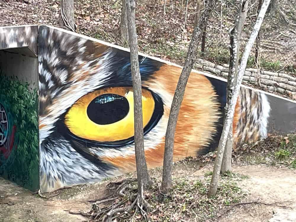 Owl Eyes Mural at Houston Arboretum