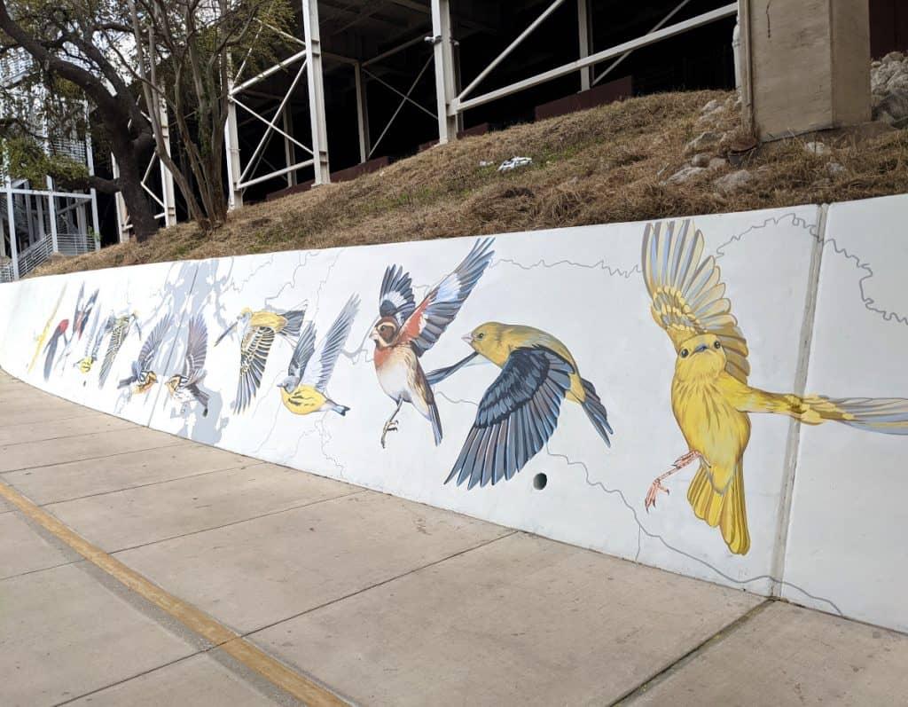 Migratory Birds Mural