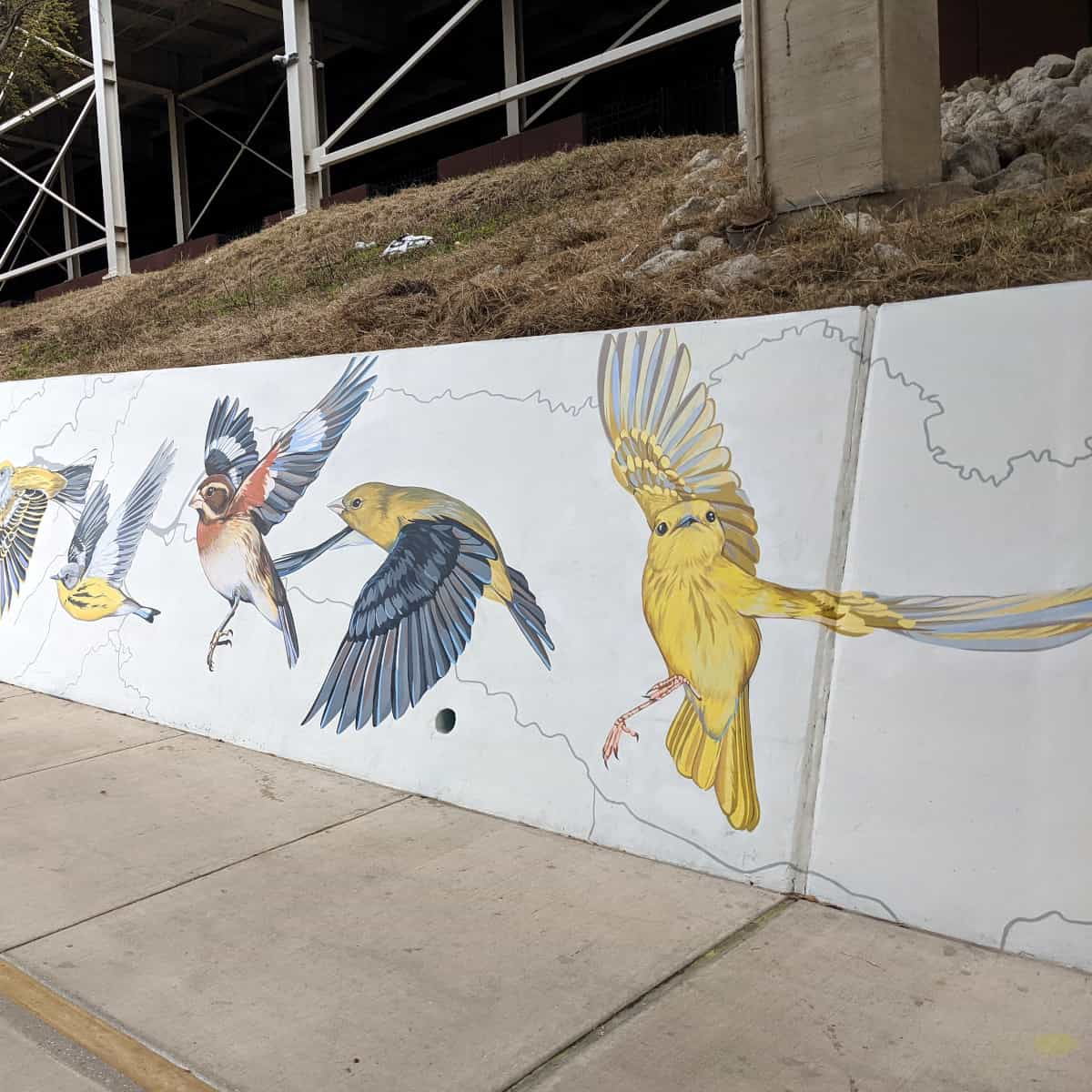 Migrating Bird Mural on the Bayou