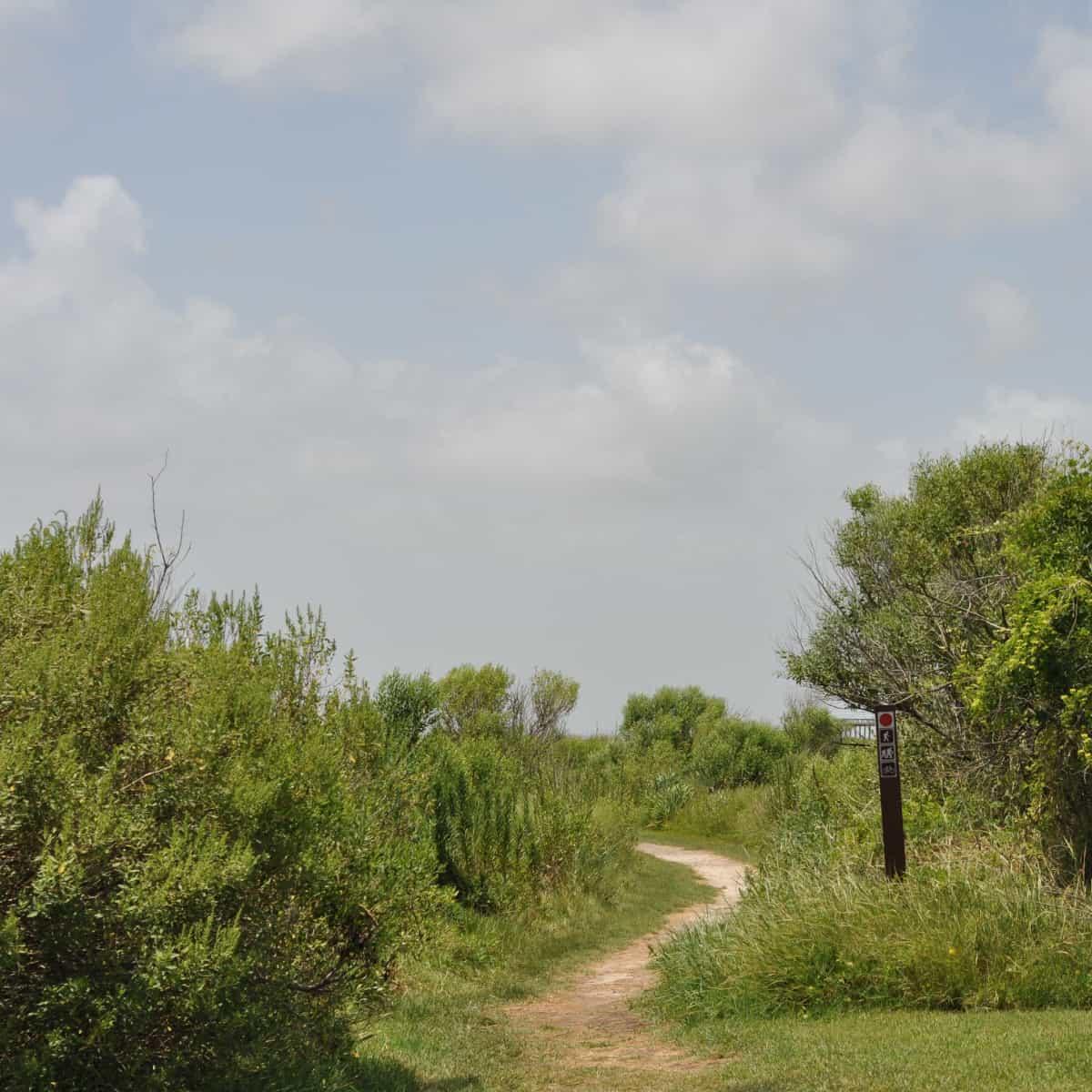 Galveston Island State Park Trail on Bay Side