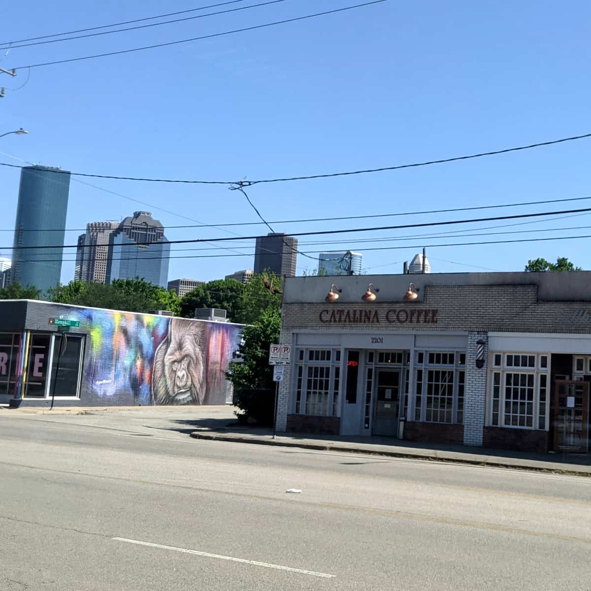 Houston Zoo Gorilla Mural on Washington Avenue