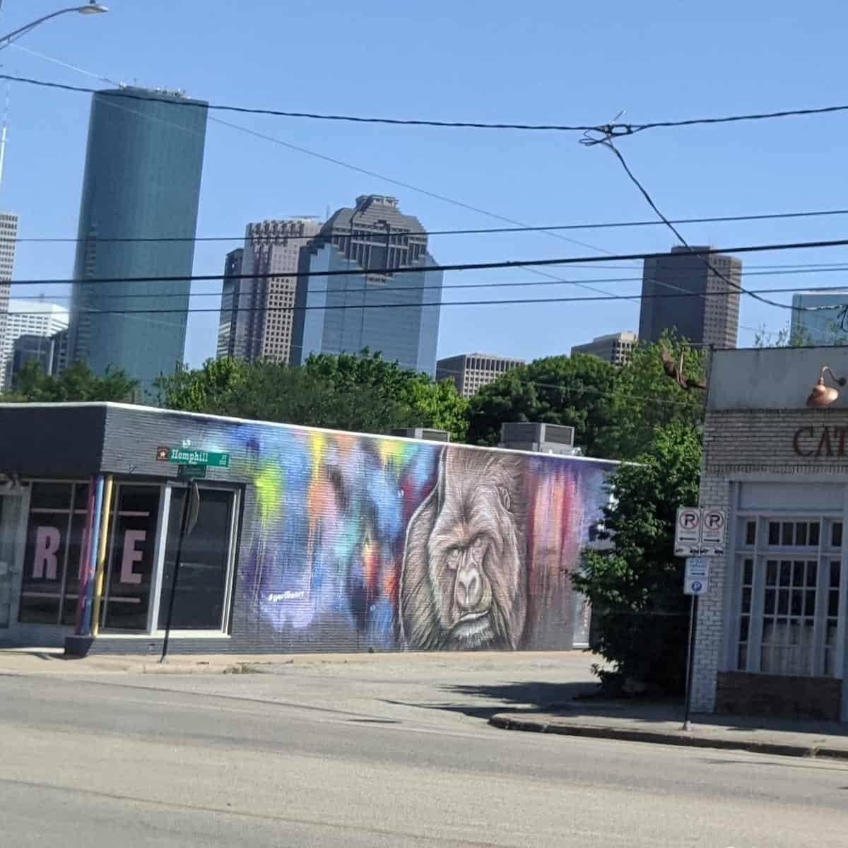Gorilla Mural on Washington Avenue
