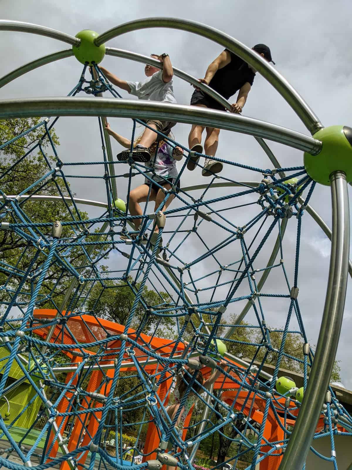 Levy Park Climbing Spiderweb