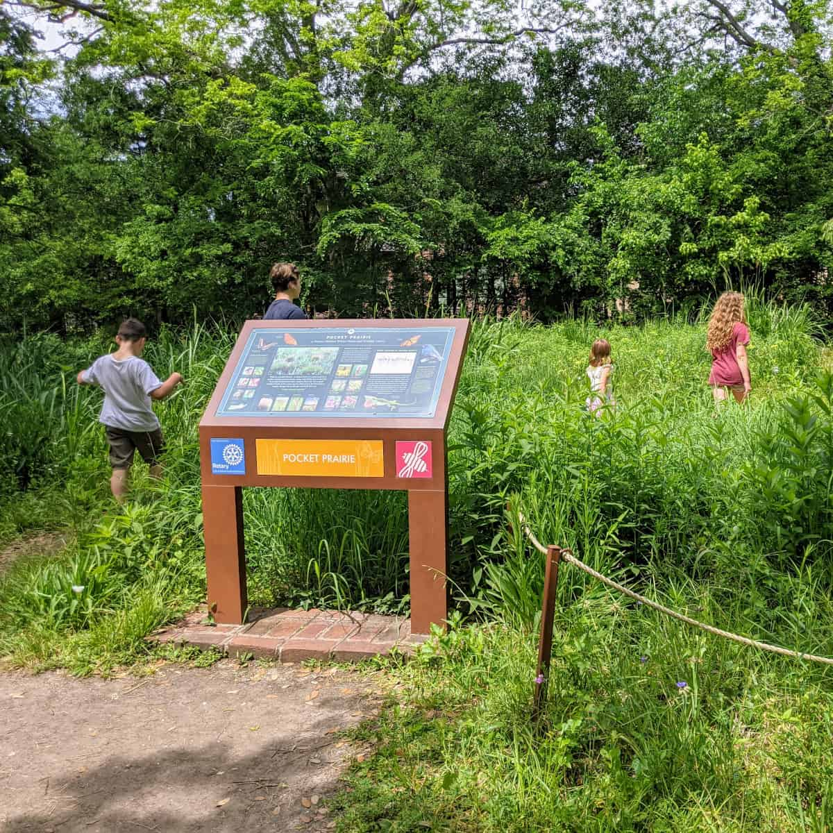 Nature Discovery Center Pocket Prairie
