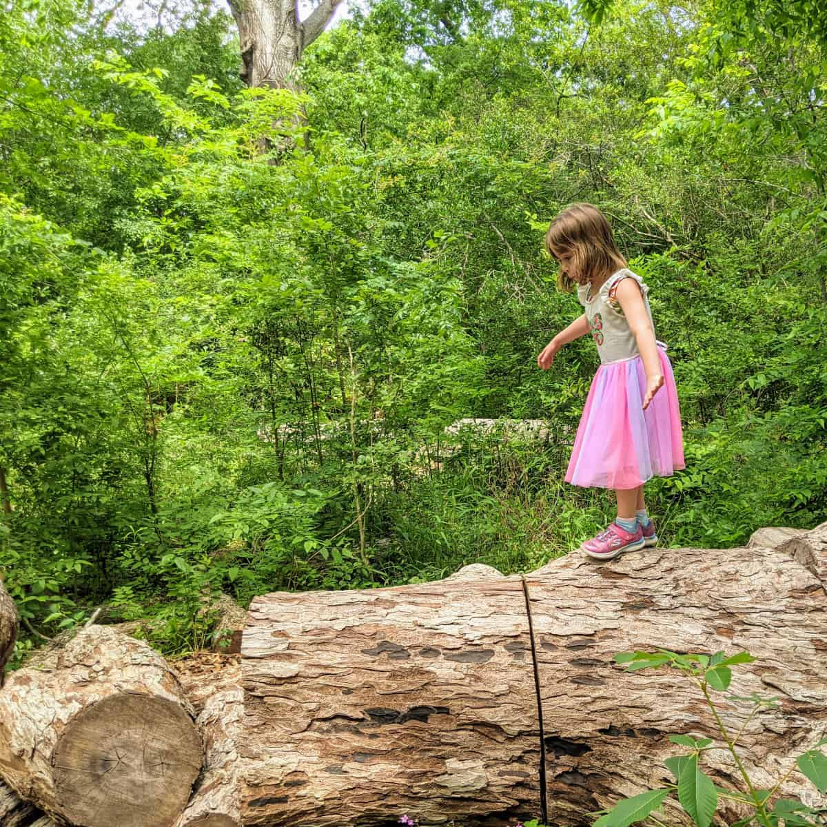 Walking on log at Nature Discovery Center