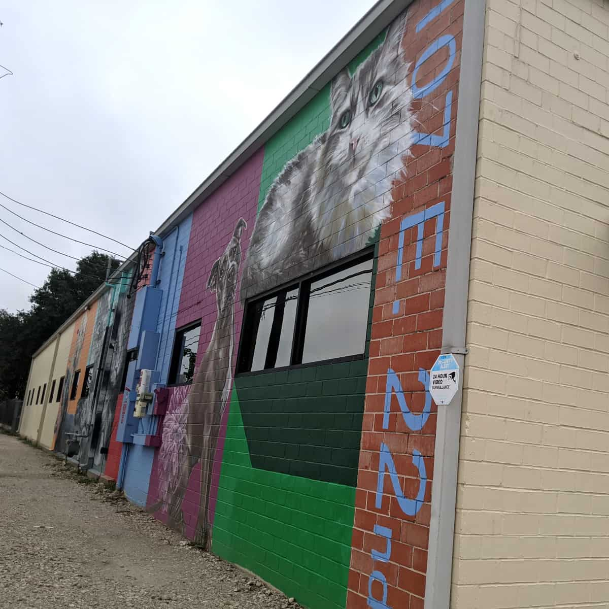 Friends for Life Pet Mural