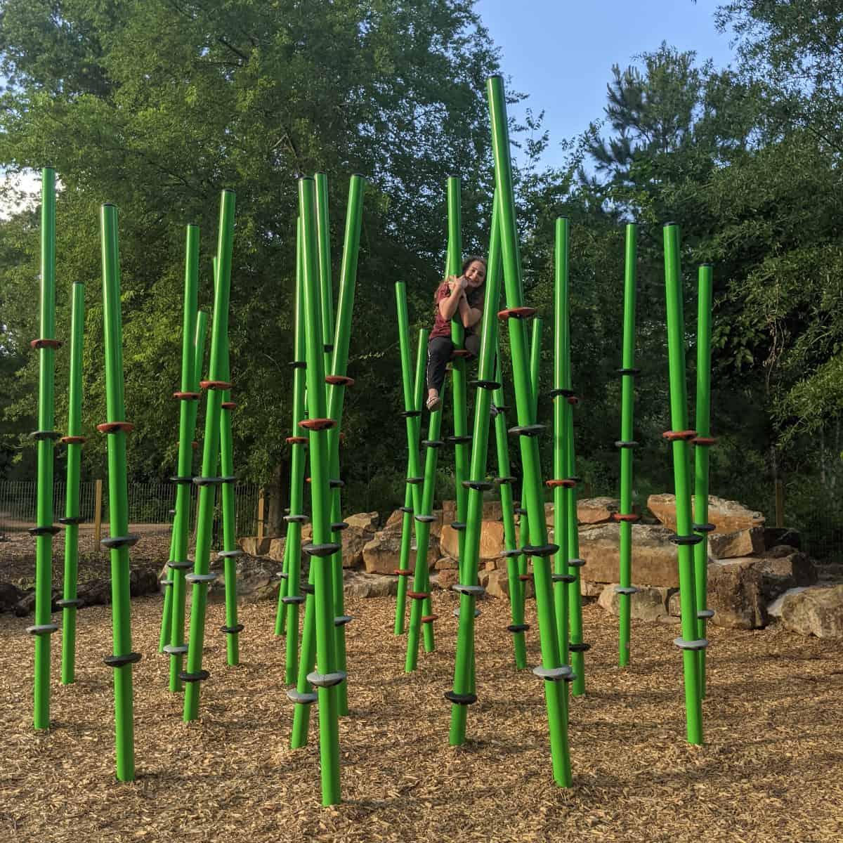 Nature Play Area Climbing Grass