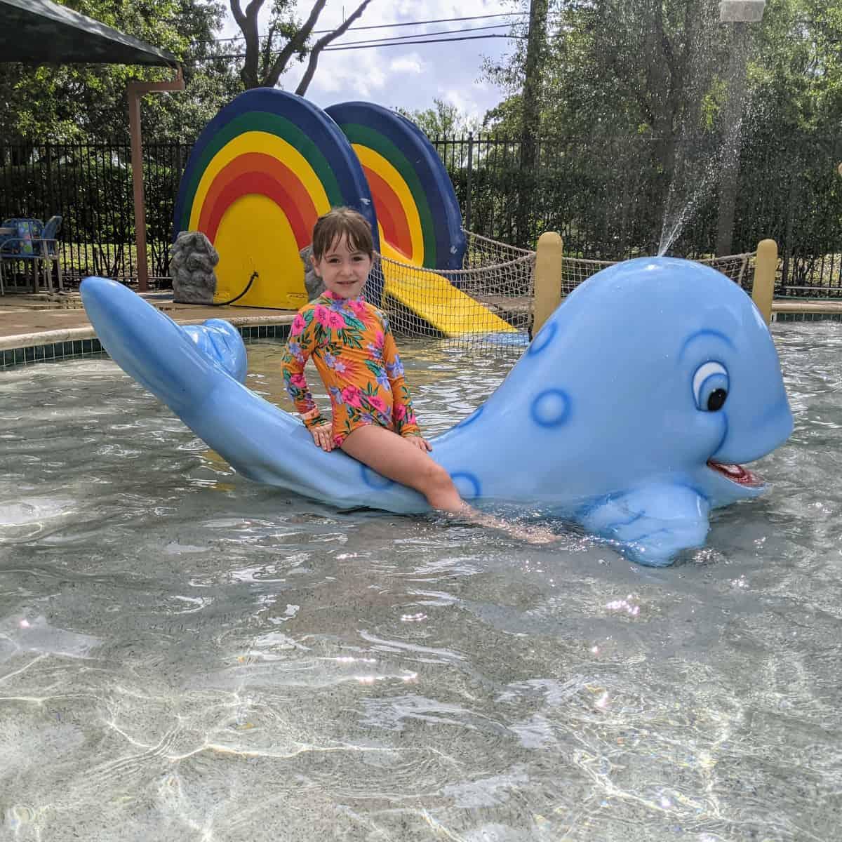 Noahs Ark Pool Whale