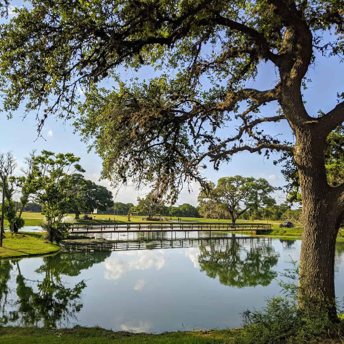 Splashway Campground Pond