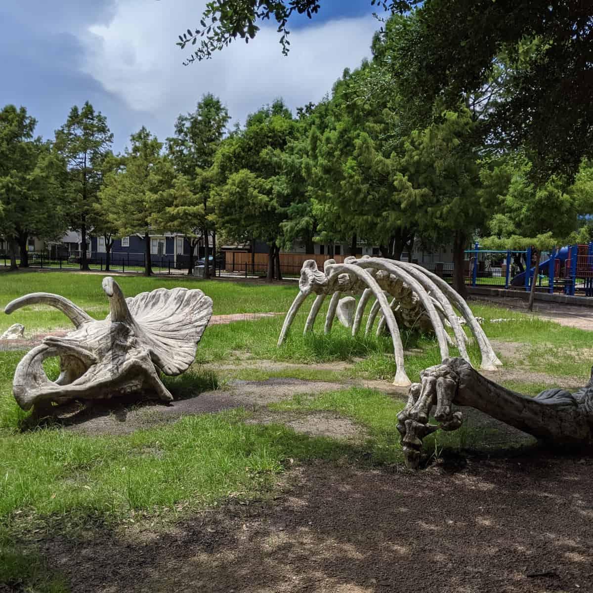 Dinosaur Bone Playground at Travis Spark Park