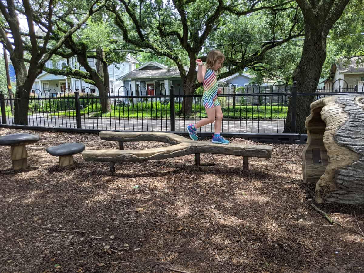 Travis Spark Park Log and Mushrooms
